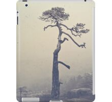 A single tree iPad Case/Skin