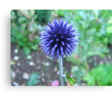 Blue Spike Canvas Print