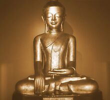 Buddha by sanyaks