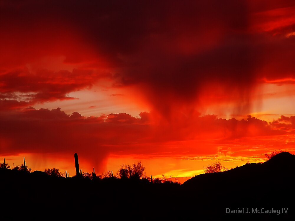 Desert Rain at Sunset by Daniel J. McCauley IV