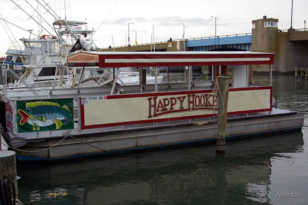 The Happy Hooker by Amedori