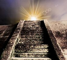 Step into the light by Wickerman