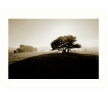Misty morning, Goolwa SA Art Print