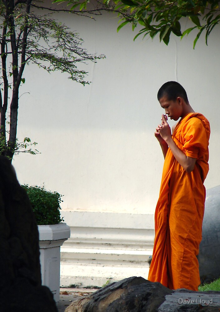 Monk And Flower by Dave Lloyd
