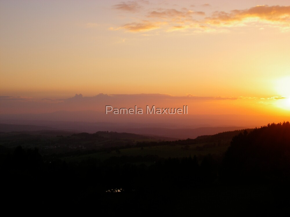 Field of Sunlight by Pamela Maxwell