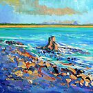 Noosa Rocks, Noosa National Park by Virginia McGowan