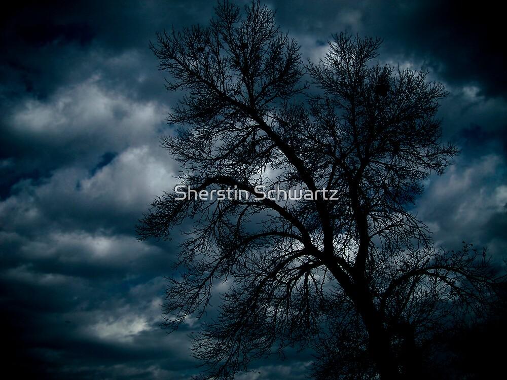 Stormy Skies by Sherstin Schwartz