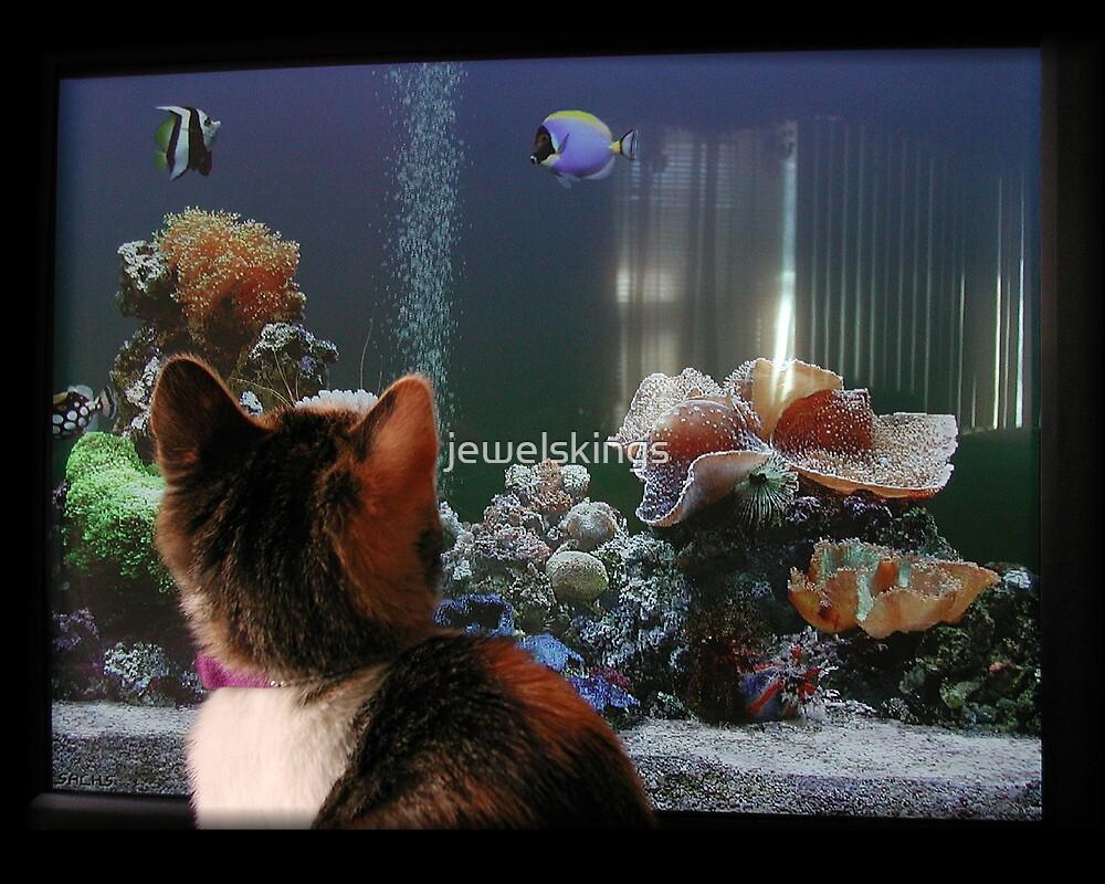 Kitten Think Tank by jewelskings