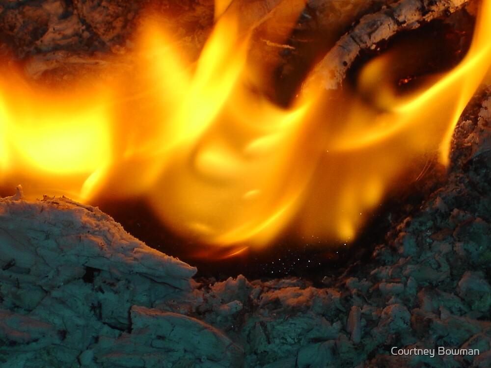 burn by Courtney Bowman