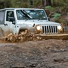 Jeep Wrangler Rubicon in the mud by robertp
