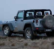 Jeep Wrangler Rubicon by Robert Pepper