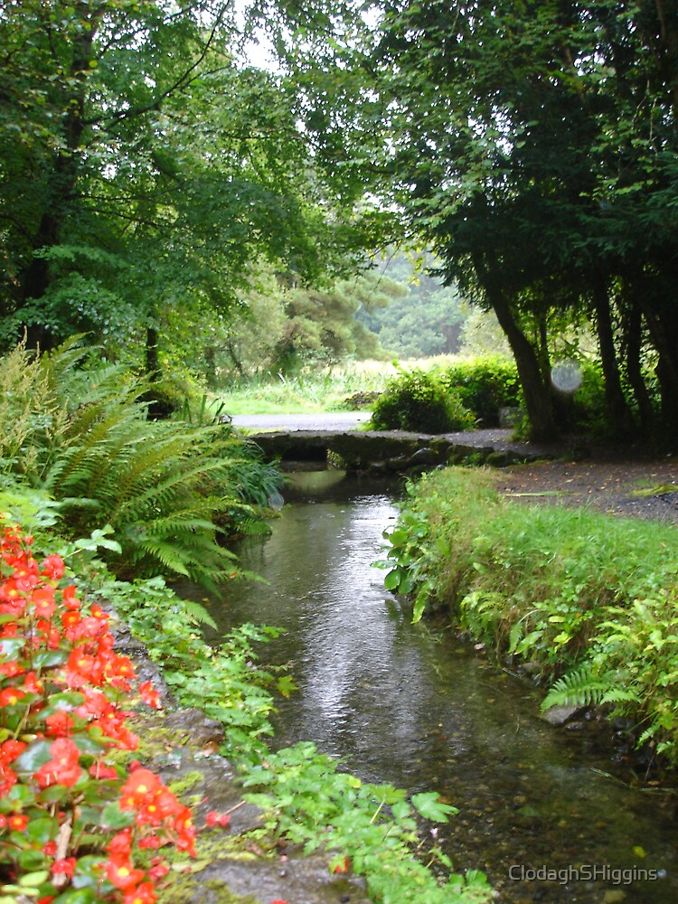 Holy Well Sligo Ireland down the stream. by ClodaghSHiggins