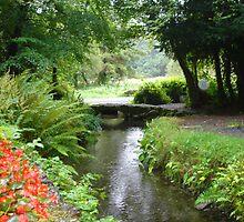 Holy Well Sligo Ireland down the stream. by ClodaghSHiggins