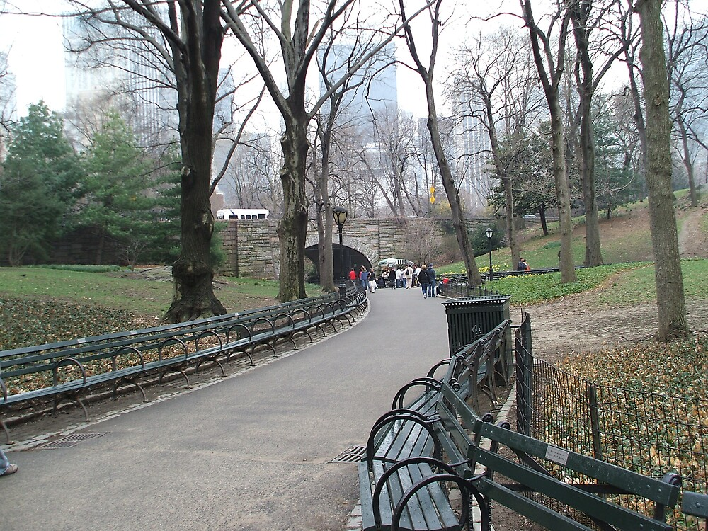 Central Park Walk by mazzy24