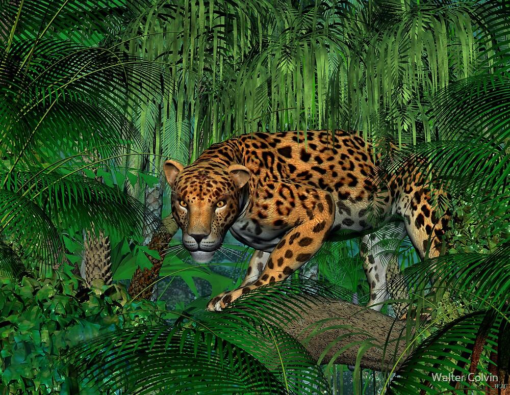 Jaguar by Walter Colvin