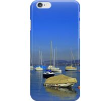 The Lake of Zurich iPhone Case/Skin