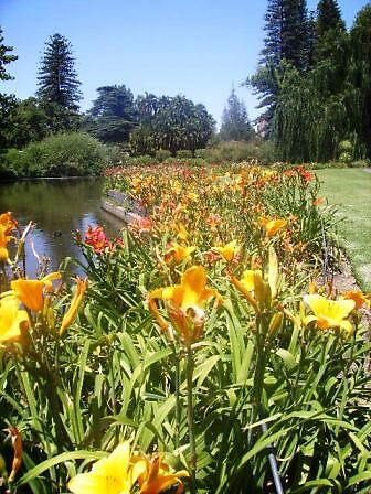 Botanics by Daniellep89