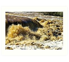 The Barwon in Flood Art Print