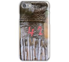 42 - the answer to all questions iPhone Case/Skin