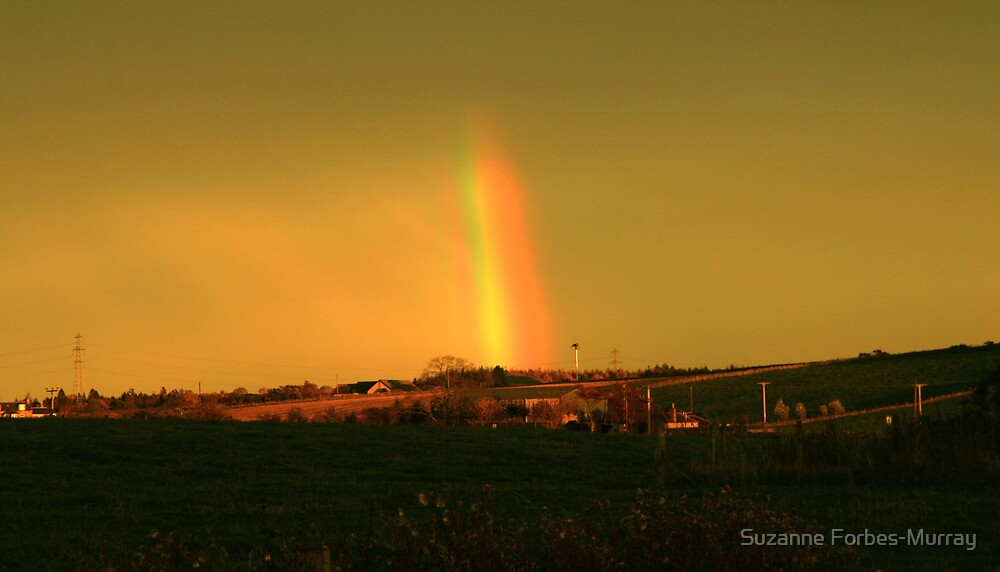 Tiny Rainbow Pot of Gold by Suzanne Forbes-Murray