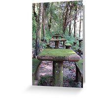 Picnic Tables at Paronella Park Queensland Greeting Card