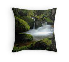 Mossy Cascades Throw Pillow