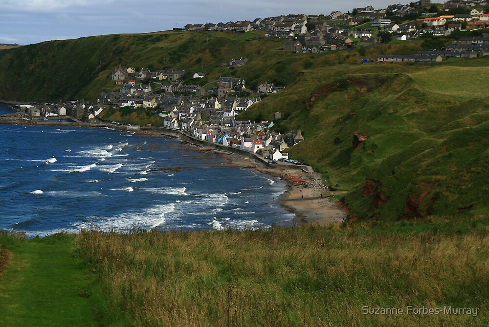Gardenstown from St Johns Churchyard by Suzanne Forbes-Murray