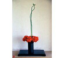 Ikebana-004 Photographic Print