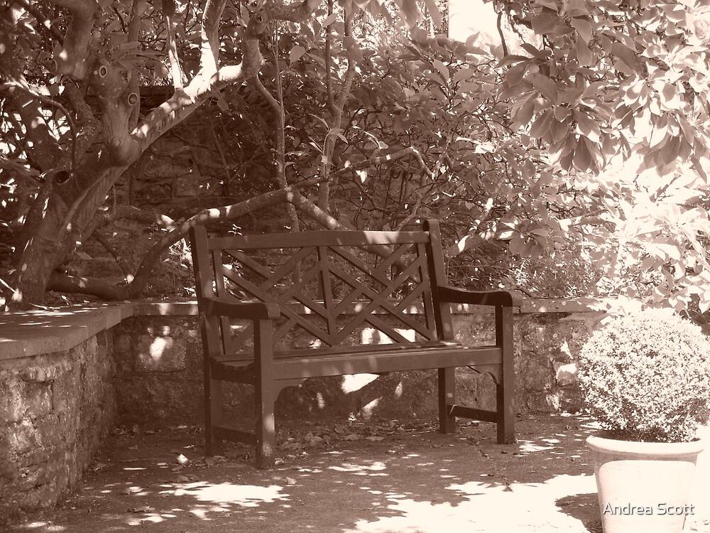 a bench at dyffryn gardens by Andrea Scott