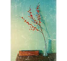 Still Life with vase Photographic Print
