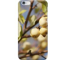 paradise apples iPhone Case/Skin