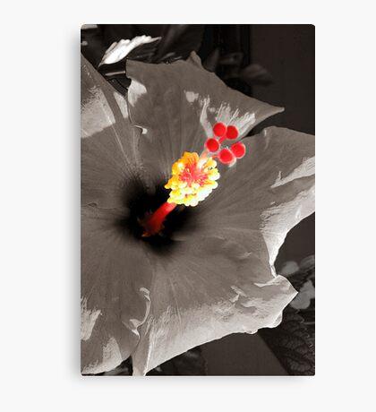 Invitation to Love Canvas Print