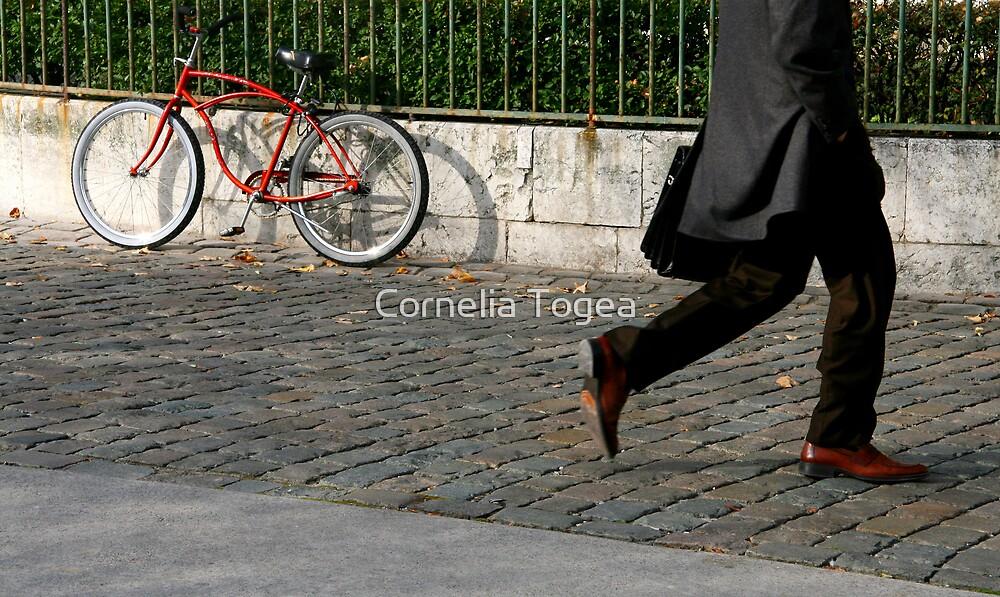 walking by by Cornelia Togea