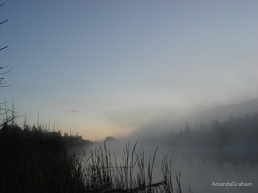 Morning Glory by AmandaGraham