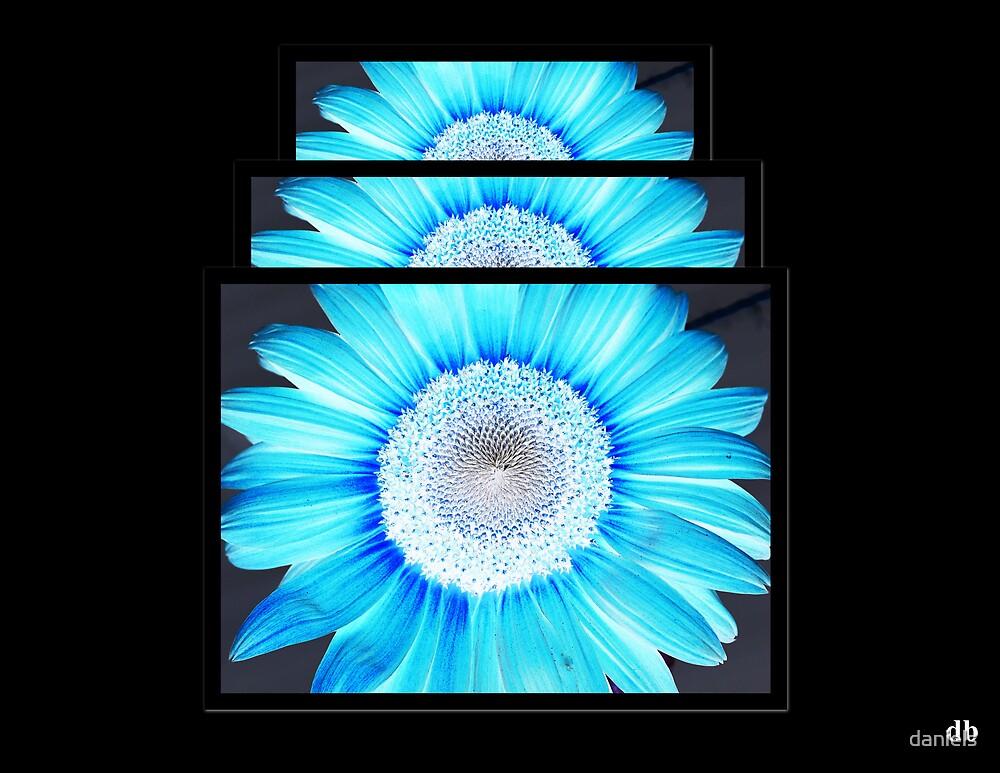 blue sun by daniels