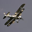 Hawker Hart by SWEEPER