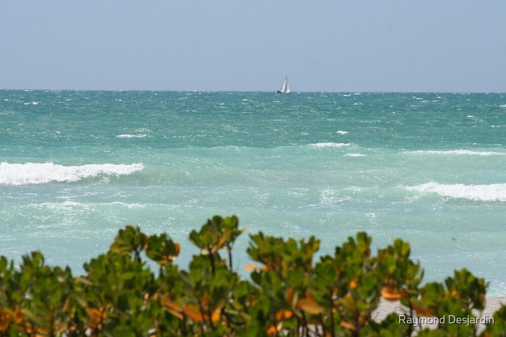 Gulf of Mexico sailing by Raymond Desjardin