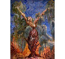 Willow Tree Spirit Photographic Print