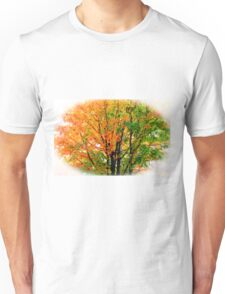 Leaves Changing Colors Unisex T-Shirt