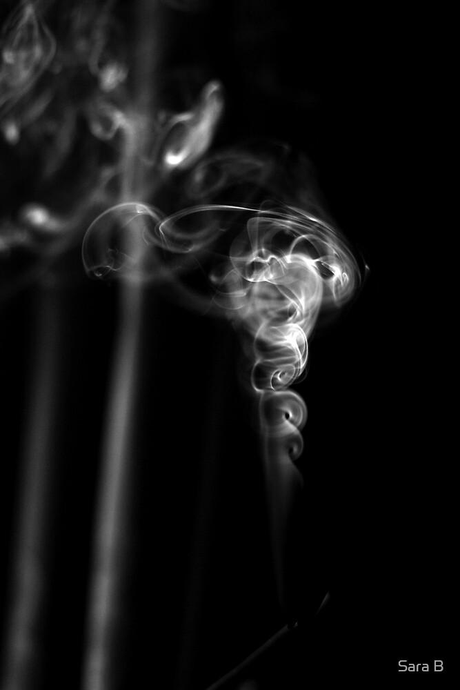 smoke 3 by Sara B
