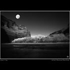 deChelly Moonscape Monochrome Poster by Wayne King