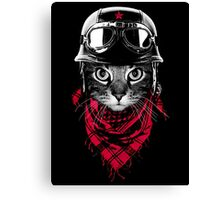 Adventurer Cat Canvas Print