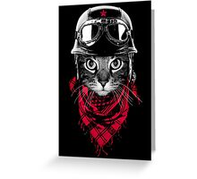 Adventurer Cat Greeting Card