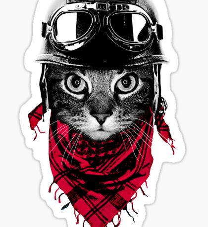 Adventurer Cat Sticker