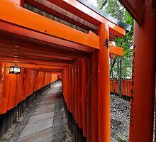 Buddhist gates at Fushimi-Inari by Yves Rubin