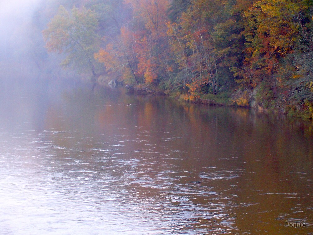Fall Day on New River by Donnie