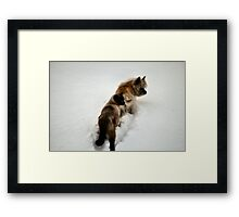 A Dynamic Duo Framed Print
