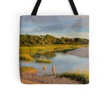 Before Sunset Tote Bag
