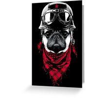 Adventurer Pug Greeting Card