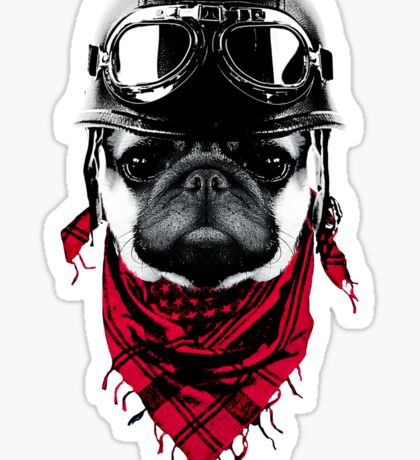 Adventurer Pug Sticker